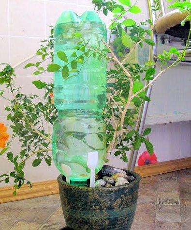 Автополив из пластиковой бутылки своими руками